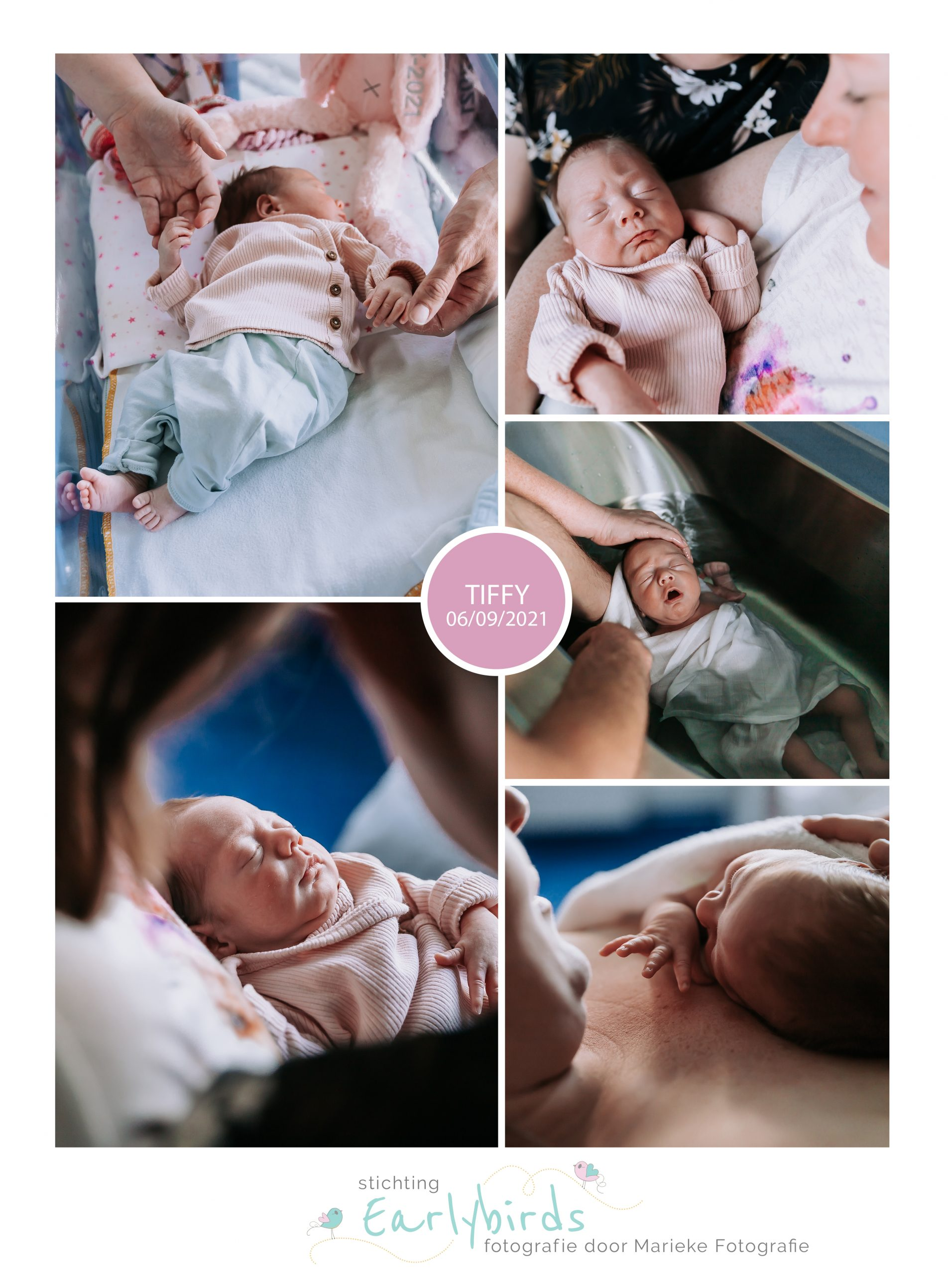 Tiffy prematuur geboren
